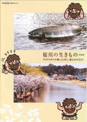 sakuragawaguide
